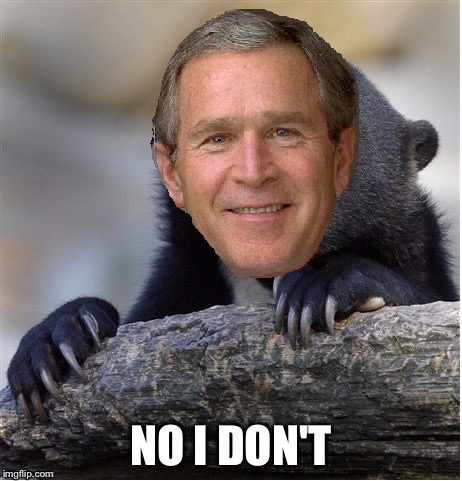Confession George Bush | NO I DON'T | image tagged in confession george bush | made w/ Imgflip meme maker
