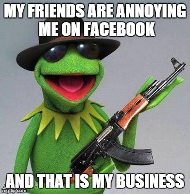 Who gets pissed off? | MY FRIENDS ARE ANNOYING ME ON FACEBOOK AND THAT IS MY BUSINESS | image tagged in kermit ak,facebook | made w/ Imgflip meme maker