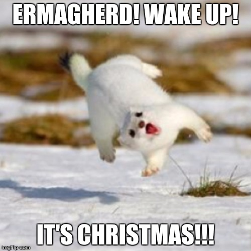 Much Snow Such Excite So Presents Yay So Holiday Imgflip It is very funny i laugh. much snow such excite so presents