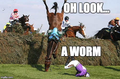 Oh Look...A worm! - Imgflip