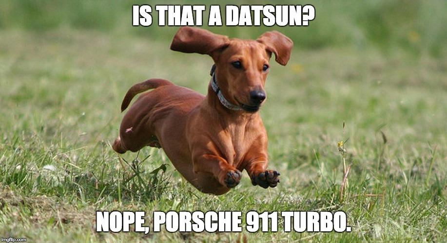 r3yov fast dachshund imgflip,Dog Running Meme