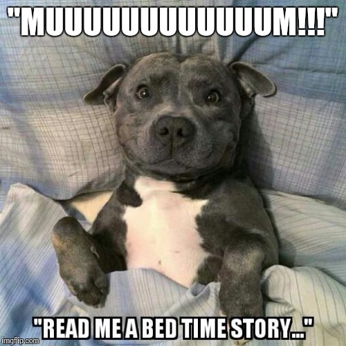 "Bedtime | ""MUUUUUUUUUUUUM!!!"" 