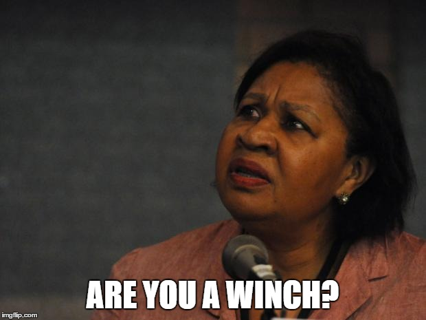ARE YOU A WINCH? | image tagged in disgruntled black woman | made w/ Imgflip meme maker