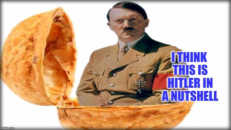 If he's in a nutshell, why does he want Nutella?  But that's none of my business | I THINK THIS IS HITLER IN A NUTSHELL | image tagged in funny,meme comments,hitler in a nutshell,seems legit | made w/ Imgflip meme maker