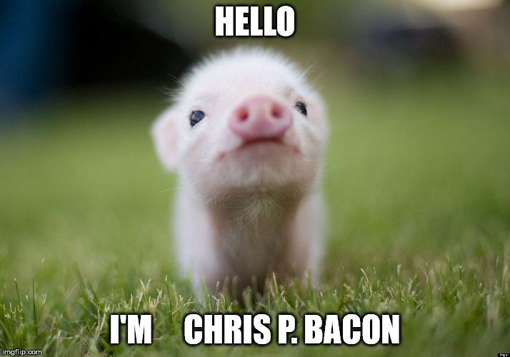 Funny Memes For Hello : Crispy bacon imgflip
