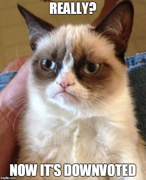 Grumpy Cat Meme | REALLY? NOW IT'S DOWNVOTED | image tagged in memes,grumpy cat | made w/ Imgflip meme maker