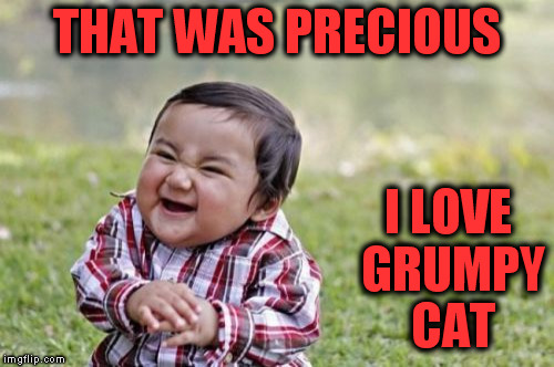 Evil Toddler Meme | THAT WAS PRECIOUS I LOVE GRUMPY CAT | image tagged in memes,evil toddler | made w/ Imgflip meme maker
