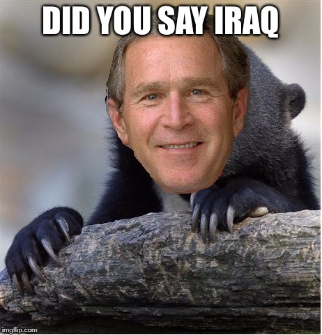 Confession George Bush | DID YOU SAY IRAQ | image tagged in confession george bush | made w/ Imgflip meme maker