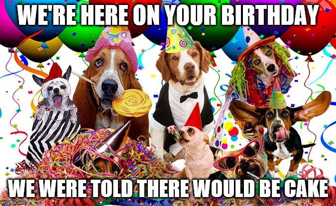 Birthday Imgflip