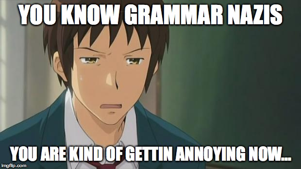 Kyon WTF | YOU KNOW GRAMMAR NAZIS YOU ARE KIND OF GETTIN ANNOYING NOW... | image tagged in kyon wtf | made w/ Imgflip meme maker