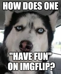 "HOW DOES ONE ""HAVE FUN"" ON IMGFLIP? 
