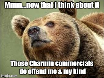 Unbearable Sentiments | Mmm...now that I think about it Those Charmin commercials do offend me & my kind | image tagged in memes,smug bear | made w/ Imgflip meme maker