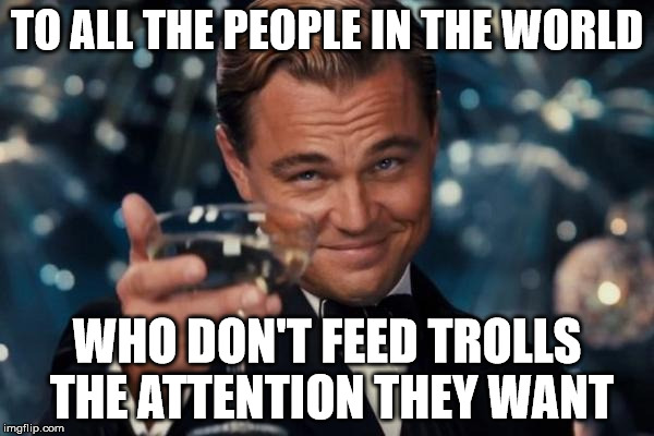 Leonardo Dicaprio Cheers Meme | TO ALL THE PEOPLE IN THE WORLD WHO DON'T FEED TROLLS THE ATTENTION THEY WANT | image tagged in memes,leonardo dicaprio cheers | made w/ Imgflip meme maker