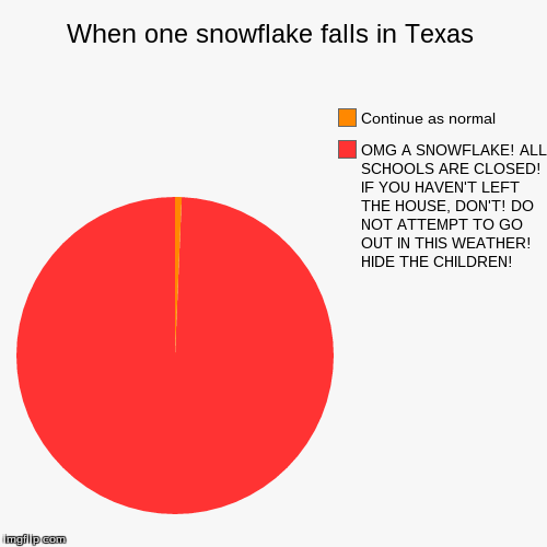 When one snowflake falls in Texas | OMG A SNOWFLAKE! ALL SCHOOLS ARE CLOSED! IF YOU HAVEN'T LEFT THE HOUSE, DON'T! DO NOT ATTEMPT TO GO OUT  | image tagged in funny,pie charts | made w/ Imgflip chart maker