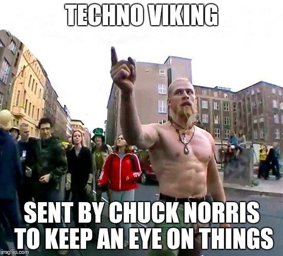 The Technoviking documentary. Or what happens when your internet ...