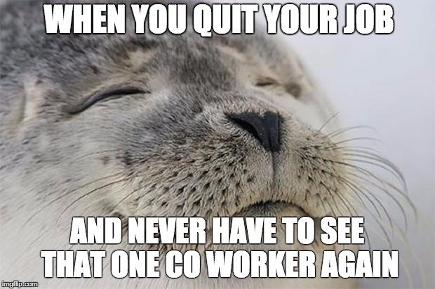 Satisfied Seal Meme | WHEN YOU QUIT YOUR JOB AND NEVER HAVE TO SEE THAT ONE CO WORKER AGAIN | image tagged in memes,satisfied seal,AdviceAnimals | made w/ Imgflip meme maker