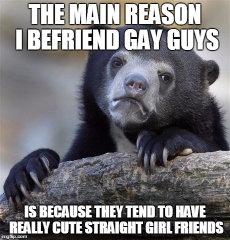 Confession Bear Meme | THE MAIN REASON I BEFRIEND GAY GUYS IS BECAUSE THEY TEND TO HAVE REALLY CUTE STRAIGHT GIRL FRIENDS | image tagged in memes,confession bear,AdviceAnimals | made w/ Imgflip meme maker