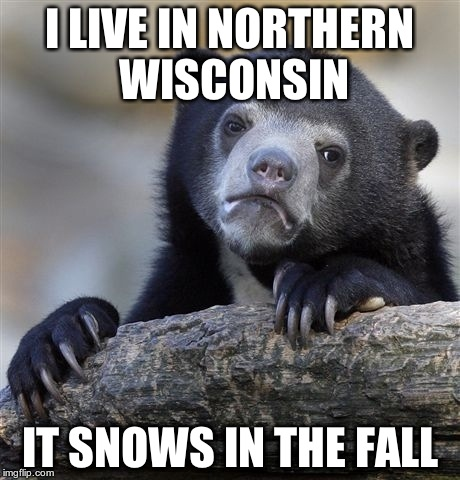 I LIVE IN NORTHERN WISCONSIN IT SNOWS IN THE FALL | image tagged in memes,confession bear | made w/ Imgflip meme maker