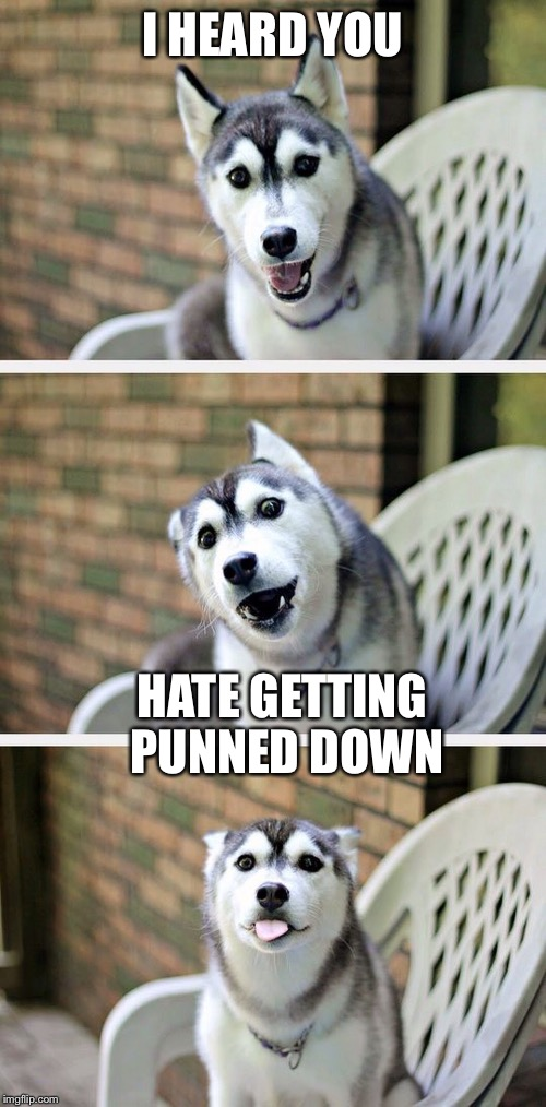 Bad Pun Dog 2 | I HEARD YOU HATE GETTING PUNNED DOWN | image tagged in bad pun dog 2 | made w/ Imgflip meme maker