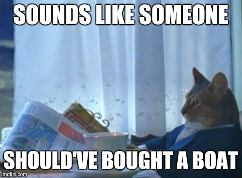 I Should Buy A Boat Cat Meme | SOUNDS LIKE SOMEONE SHOULD'VE BOUGHT A BOAT | image tagged in memes,i should buy a boat cat | made w/ Imgflip meme maker