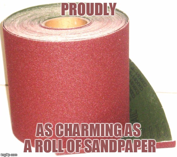 Sandpaper TP | PROUDLY AS CHARMING AS A ROLL OF SANDPAPER | image tagged in funny,funny memes,toilet paper,toilet humor,humor | made w/ Imgflip meme maker