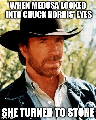 Chuck Norris | WHEN MEDUSA LOOKED INTO CHUCK NORRIS' EYES SHE TURNED TO STONE | image tagged in chuck norris | made w/ Imgflip meme maker