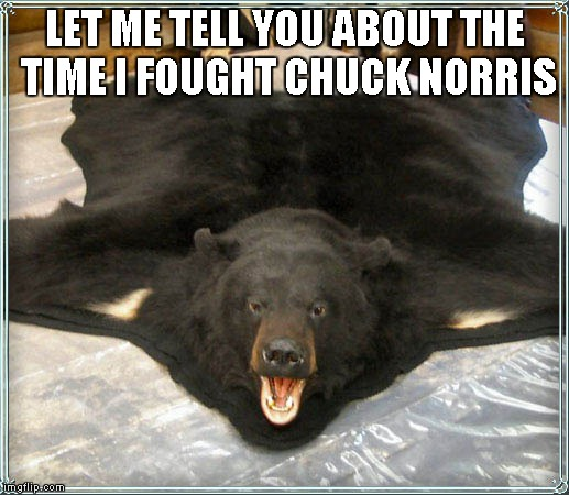 LET ME TELL YOU ABOUT THE TIME I FOUGHT CHUCK NORRIS | image tagged in bearskin rug | made w/ Imgflip meme maker