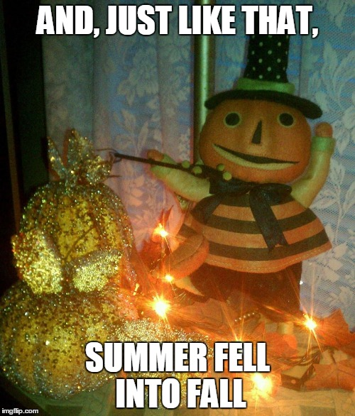 AND, JUST LIKE THAT, SUMMER FELL INTO FALL | image tagged in fall | made w/ Imgflip meme maker