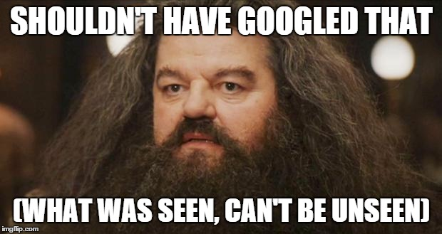 SHOULDN'T HAVE GOOGLED THAT (WHAT WAS SEEN, CAN'T BE UNSEEN) | made w/ Imgflip meme maker