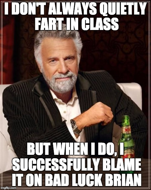 The Most Interesting Man In The World Meme | I DON'T ALWAYS QUIETLY FART IN CLASS BUT WHEN I DO, I SUCCESSFULLY BLAME IT ON BAD LUCK BRIAN | image tagged in memes,the most interesting man in the world | made w/ Imgflip meme maker