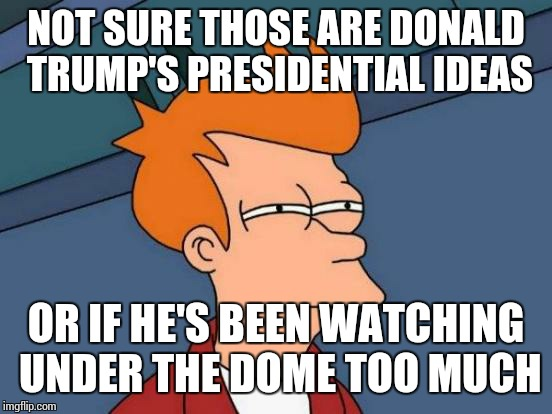 I heard this front kids from school,  sorry if it's a repost, I didn't mean it | NOT SURE THOSE ARE DONALD TRUMP'S PRESIDENTIAL IDEAS OR IF HE'S BEEN WATCHING UNDER THE DOME TOO MUCH | image tagged in memes,futurama fry,donald trump | made w/ Imgflip meme maker