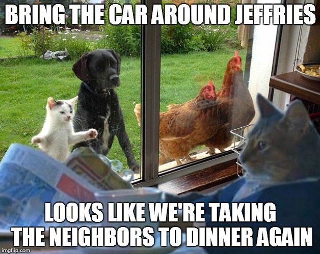 Funny Memes For Neighbors : Bring the car around jeffries imgflip