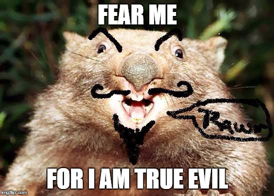 Evil Wombat | FEAR ME FOR I AM TRUE EVIL | image tagged in animal,evil | made w/ Imgflip meme maker
