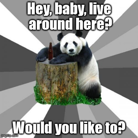 Pickup Line Panda | Hey, baby, live around here? Would you like to? | image tagged in memes,pickup line panda | made w/ Imgflip meme maker