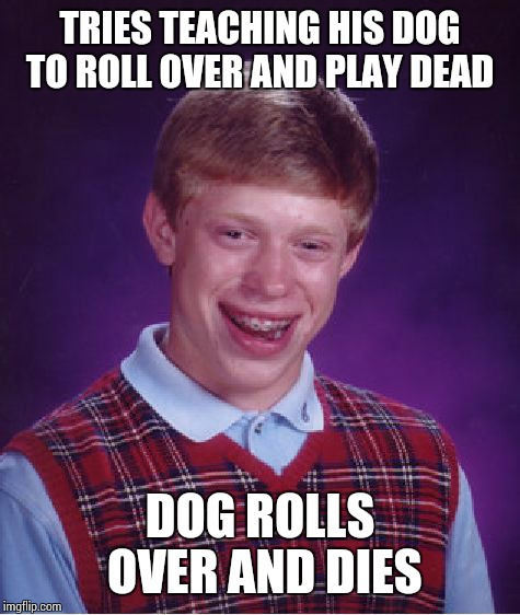 Bad Luck Brian Meme | TRIES TEACHING HIS DOG TO ROLL OVER AND PLAY DEAD DOG ROLLS OVER AND DIES | image tagged in memes,bad luck brian | made w/ Imgflip meme maker
