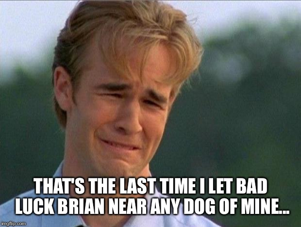 THAT'S THE LAST TIME I LET BAD LUCK BRIAN NEAR ANY DOG OF MINE... | made w/ Imgflip meme maker