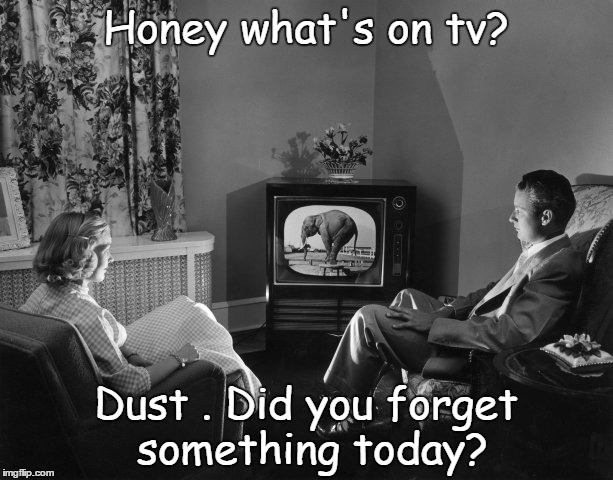 Honey what's on tv? Dust . Did you forget something today? | image tagged in wife,kitchen | made w/ Imgflip meme maker