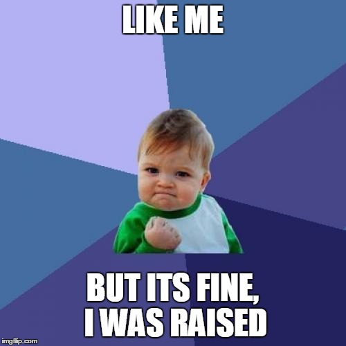 Success Kid Meme | LIKE ME BUT ITS FINE, I WAS RAISED | image tagged in memes,success kid | made w/ Imgflip meme maker