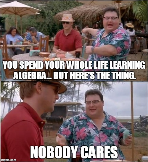 See Nobody Cares | YOU SPEND YOUR WHOLE LIFE LEARNING ALGEBRA... BUT HERE'S THE THING. NOBODY CARES | image tagged in memes,see nobody cares | made w/ Imgflip meme maker