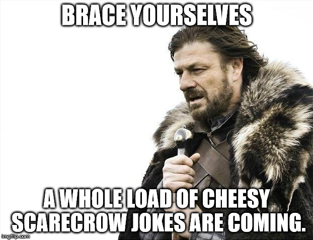Brace Yourselves X is Coming Meme | BRACE YOURSELVES A WHOLE LOAD OF CHEESY SCARECROW JOKES ARE COMING. | image tagged in memes,brace yourselves x is coming | made w/ Imgflip meme maker