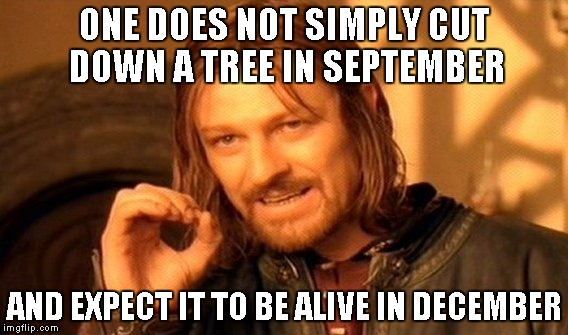 One Does Not Simply Meme | ONE DOES NOT SIMPLY CUT DOWN A TREE IN SEPTEMBER AND EXPECT IT TO BE ALIVE IN DECEMBER | image tagged in memes,one does not simply | made w/ Imgflip meme maker