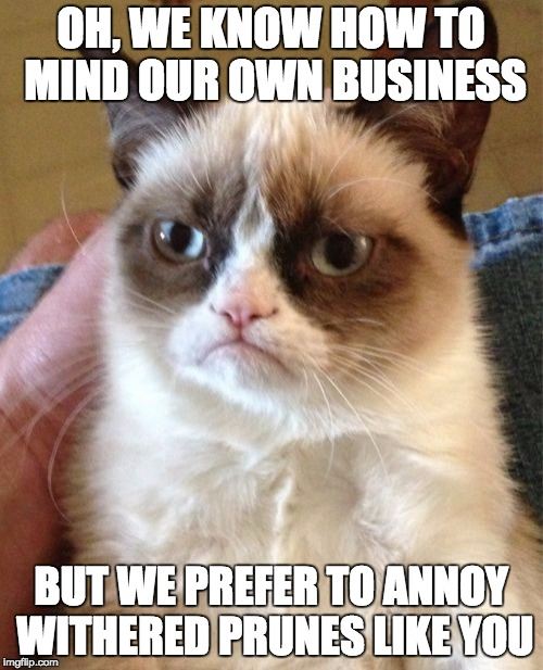Grumpy Cat Meme | OH, WE KNOW HOW TO MIND OUR OWN BUSINESS BUT WE PREFER TO ANNOY WITHERED PRUNES LIKE YOU | image tagged in memes,grumpy cat | made w/ Imgflip meme maker