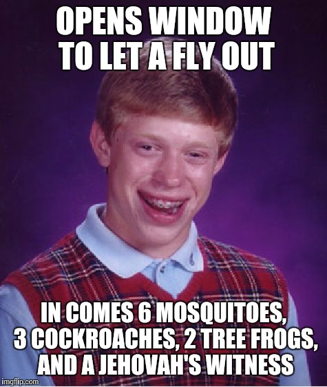 Bad Luck Brian Meme | OPENS WINDOW TO LET A FLY OUT IN COMES 6 MOSQUITOES, 3 COCKROACHES, 2 TREE FROGS, AND A JEHOVAH'S WITNESS | image tagged in memes,bad luck brian | made w/ Imgflip meme maker