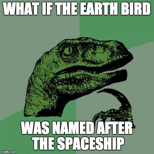 Philosoraptor Meme | WHAT IF THE EARTH BIRD WAS NAMED AFTER THE SPACESHIP | image tagged in memes,philosoraptor | made w/ Imgflip meme maker