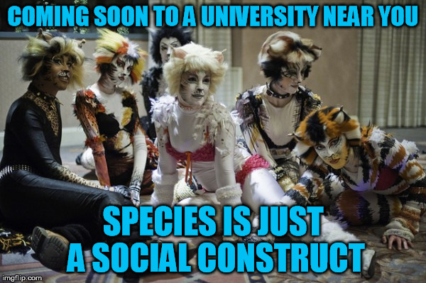Liberal ideologies taken to their logical conclusions  | COMING SOON TO A UNIVERSITY NEAR YOU SPECIES IS JUST A SOCIAL CONSTRUCT | image tagged in cats,liberals,transgender,transhuman,trans-species | made w/ Imgflip meme maker