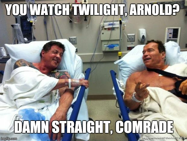 r n t | YOU WATCH TWILIGHT, ARNOLD? DAMN STRAIGHT, COMRADE | image tagged in r n t | made w/ Imgflip meme maker