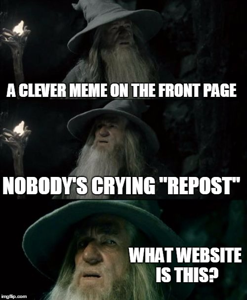 "Confused Gandalf Meme | A CLEVER MEME ON THE FRONT PAGE NOBODY'S CRYING ""REPOST"" WHAT WEBSITE IS THIS? 