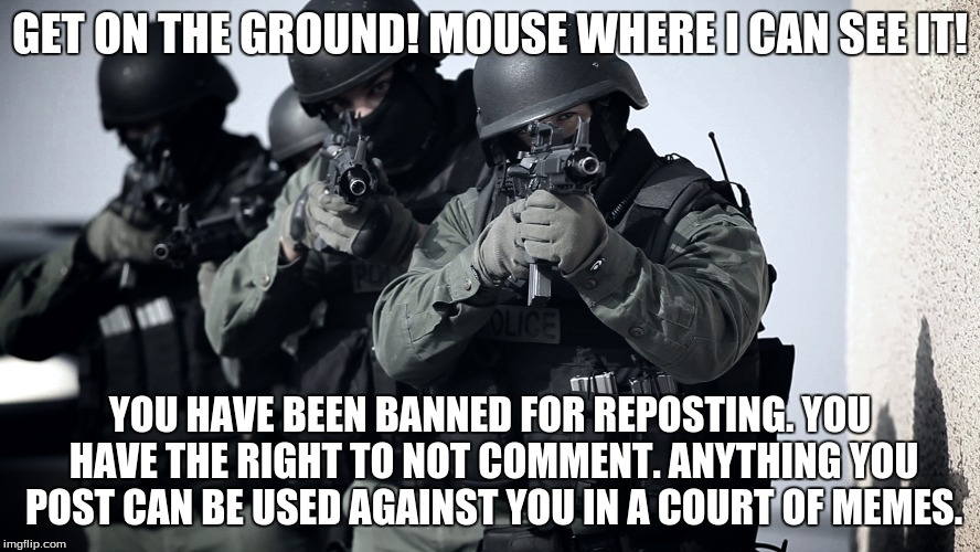 GET ON THE GROUND! MOUSE WHERE I CAN SEE IT! YOU HAVE BEEN BANNED FOR REPOSTING. YOU HAVE THE RIGHT TO NOT COMMENT. ANYTHING YOU POST CAN BE | made w/ Imgflip meme maker