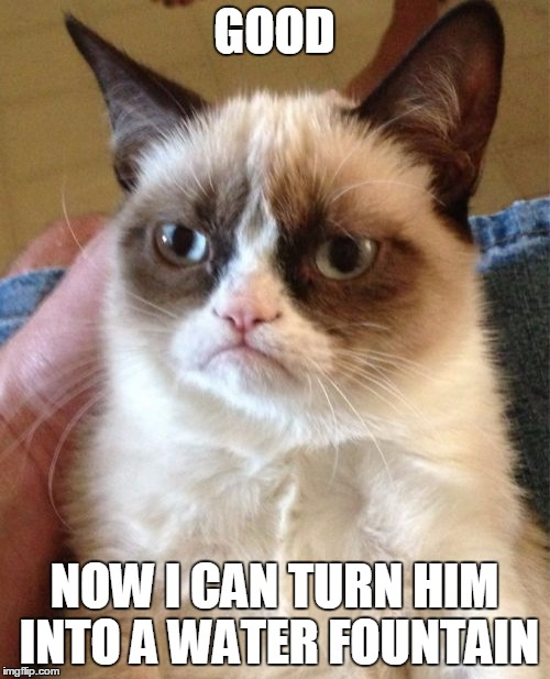 Grumpy Cat Meme | GOOD NOW I CAN TURN HIM INTO A WATER FOUNTAIN | image tagged in memes,grumpy cat | made w/ Imgflip meme maker