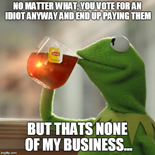 But Thats None Of My Business | NO MATTER WHAT, YOU VOTE FOR AN IDIOT ANYWAY AND END UP PAYING THEM BUT THATS NONE OF MY BUSINESS... | image tagged in memes,but thats none of my business,kermit the frog | made w/ Imgflip meme maker